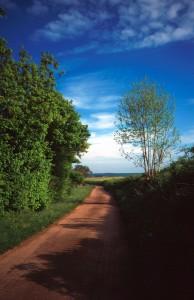 Chemin dans la campagne de Fain-les-Moutiers,